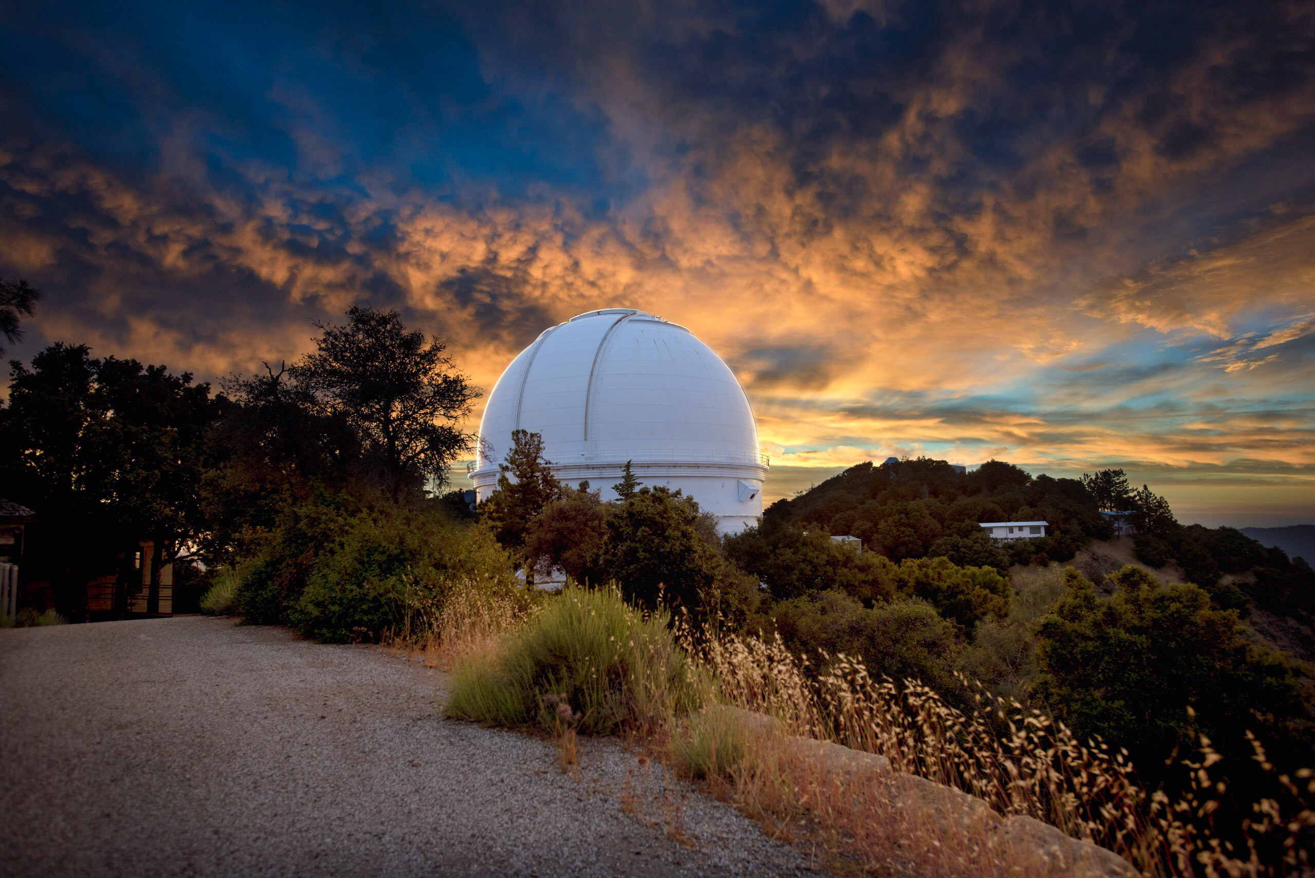 Lick observatory summer lesbian and